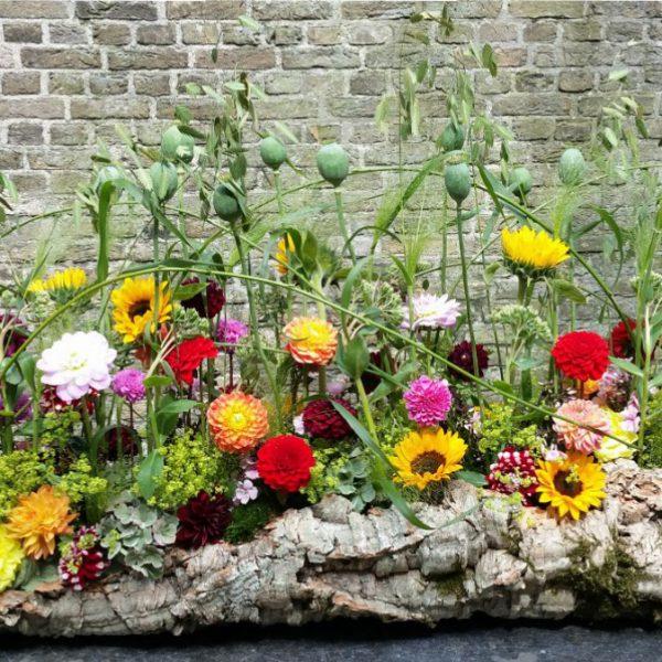 zomerse tuinsfeer