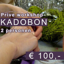 Prive workshop kadobon
