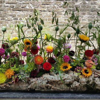 flower object training